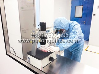 原能细胞产业园-上海浦东张江医药实验室