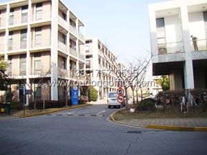 张江soho三期(张江办公楼)