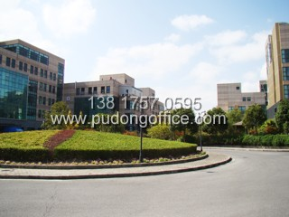 张江办公楼