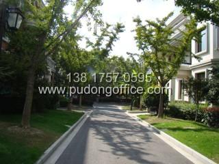 润和国际总部园-上海浦东张江独栋写字楼
